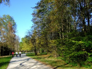 Nordic walking in Sardinia: the Iglesiente