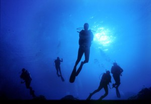 Underwater Sardinia
