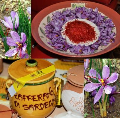 Giallo Zafferano: l'oro nel piatto!