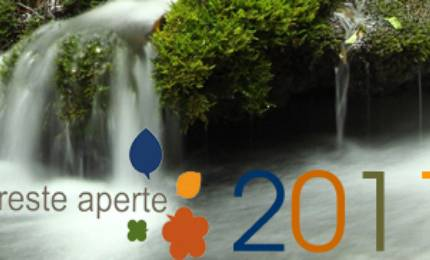 Foreste Aperte 2011