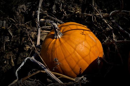Halloween in Sardegna: attenti ai vampiri