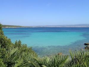 Spiagge in Sardegna: Alghero