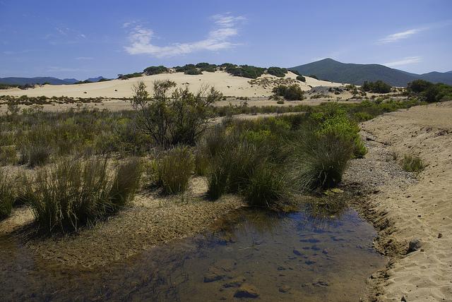Dune di Piscinas, Sardegna