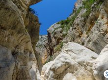 5 curiosità sulla Sardegna: cose da sapere sull'isola di Ichnusa
