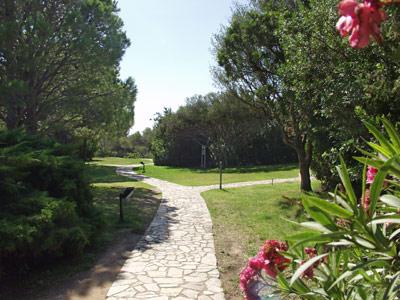 Villaggio vacanze cugnana verde cugnana olbia for Centro divani olbia